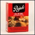 RAJAH CURRY POWDER ALL-IN-ONE 10X100G